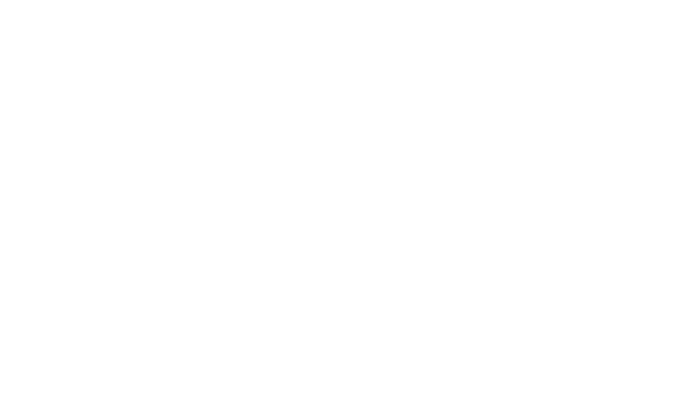 Niek van Son